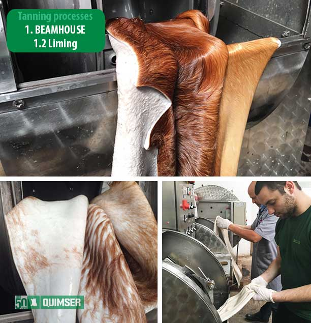 Tanning processes. Beamhouse: Liming