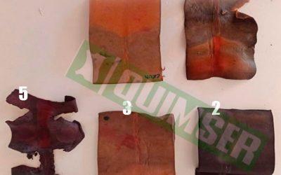 Ensayo biodegradabilidad de la piel (con crust en vacuno) #2
